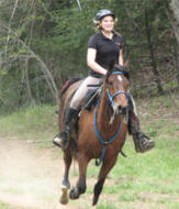 horseback riding lessons nc