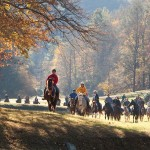 nc horseback riding leatherwood mountains