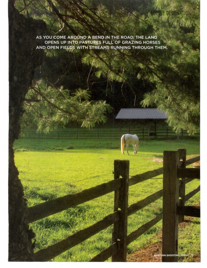 Leatherwood Mountains October Travel article  Western Shooting Horse_Page_5